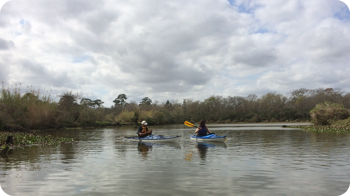 armand-bayou-kayak-tour-1