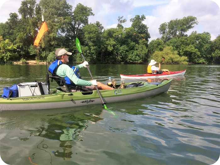 Lady Bird Lake Kayak Tour - Austin, Texas